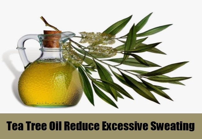 Tea Tree Oil Reduce Excessive Sweating