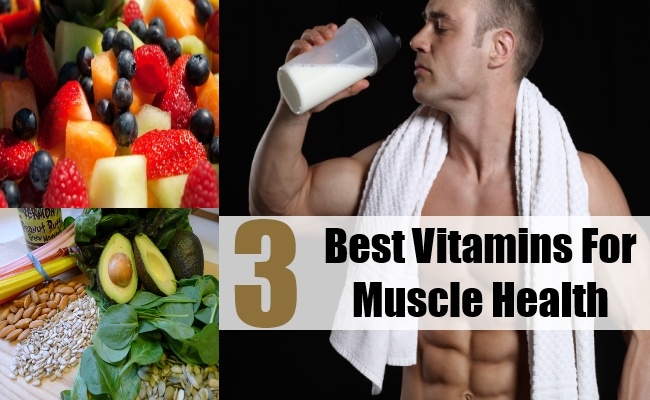 Best Vitamins For Muscle Health