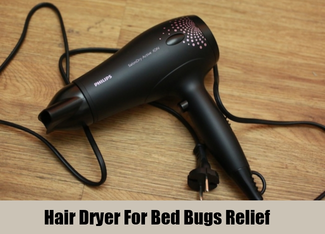Hair Dryer For Bed Bugs Relief