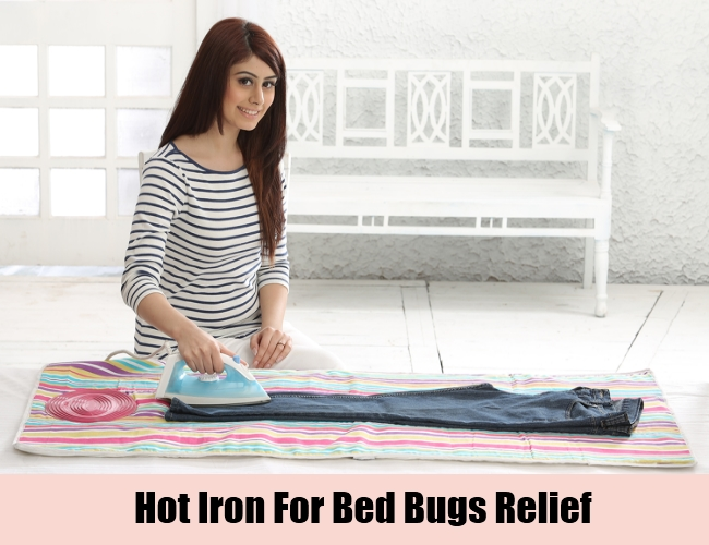 Hot Iron For Bed Bugs Relief