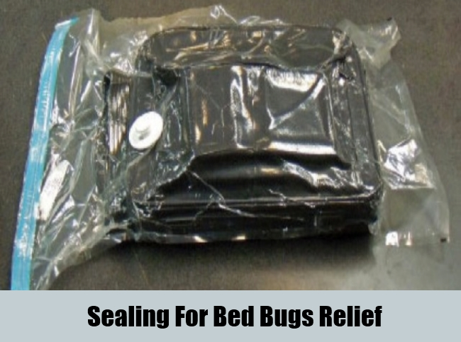 Sealing For Bed Bugs Relief
