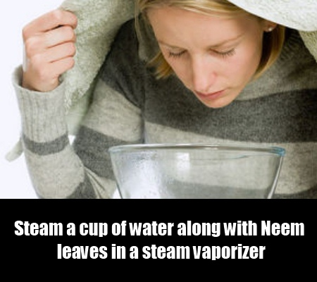 Steam Therapy