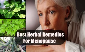 Best Herbal Remedies For Menopause