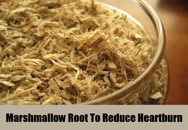 Marshmallow Root To Reduce Heartburn