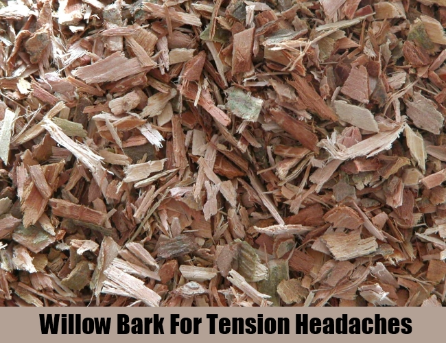 Willow Bark For Tension Headaches