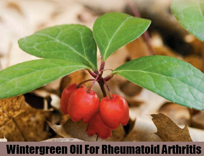 Wintergreen Oil For Rheumatoid Arthritis