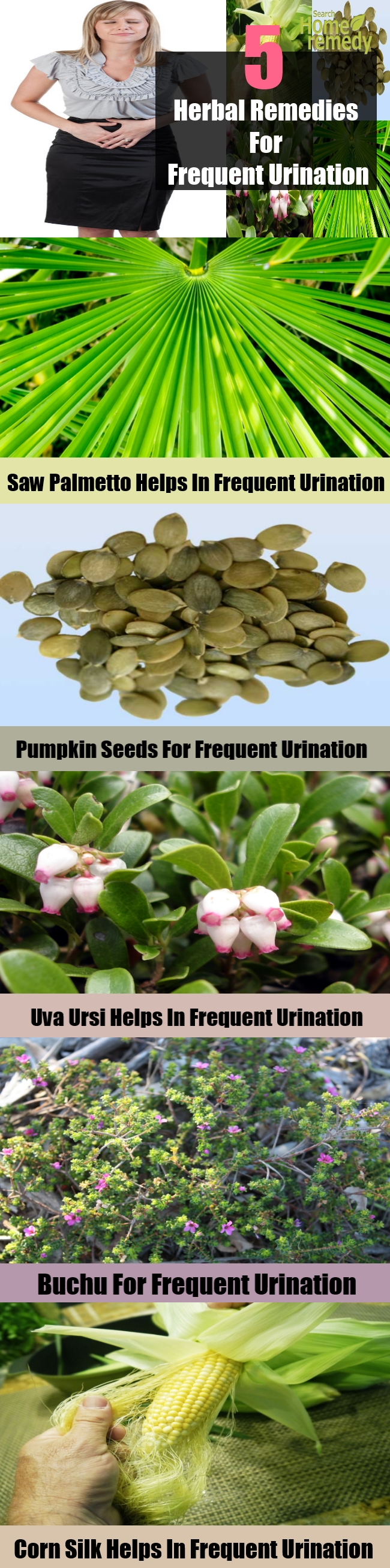 5 Best Herbal Remedies For Frequent Urination