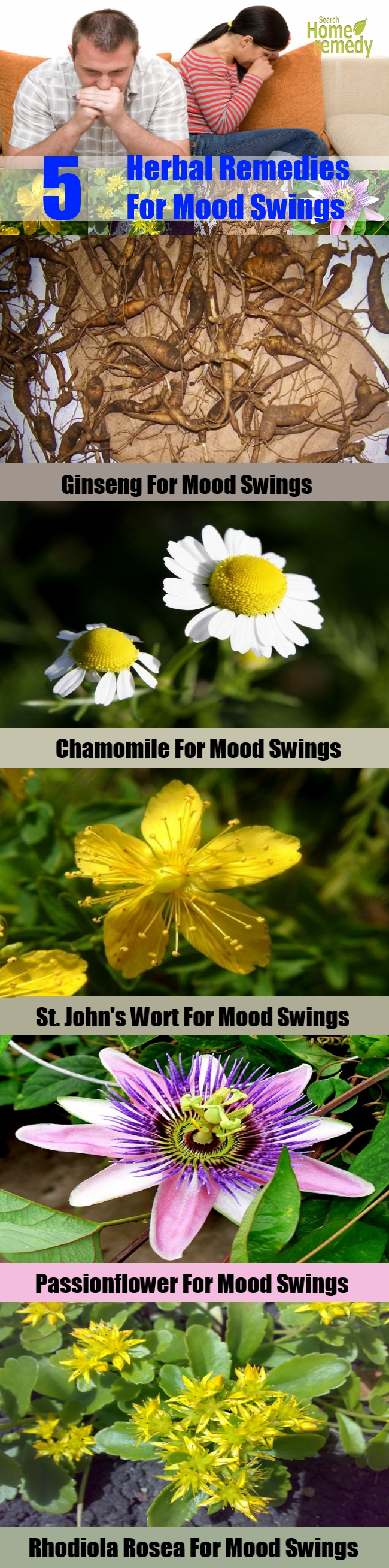 5 Top Herbal Remedies For Mood Swings