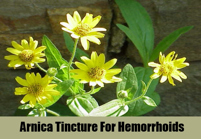 Arnica Tincture For Hemorrhoids