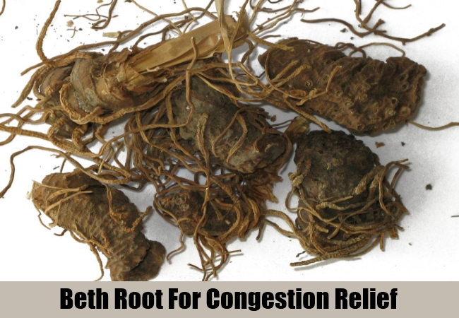 Beth Root For Congestion Relief
