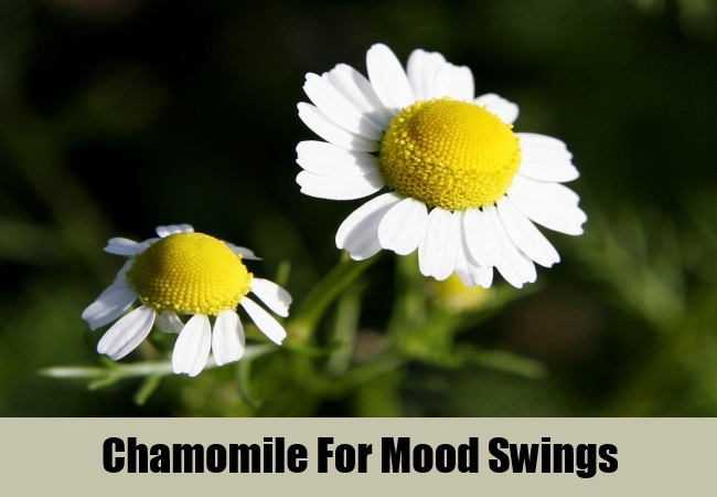 Chamomile For Mood Swings