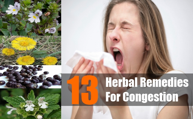 Herbal Remedies For Congestion