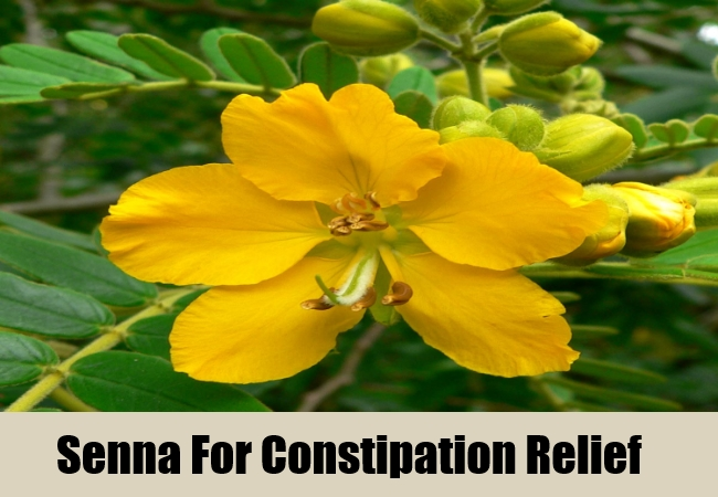 Senna For Constipation Relief
