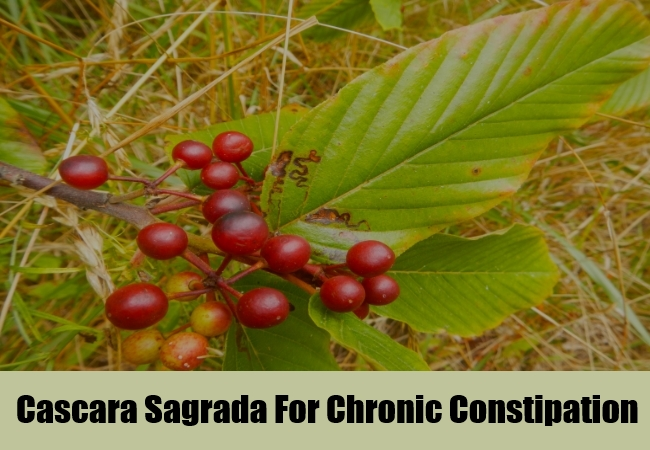 Cascara Sagrada For Chronic Constipation