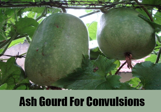 Ash Gourd For Convulsions