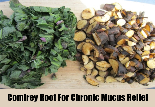 Comfrey Root For Chronic Mucus Relief