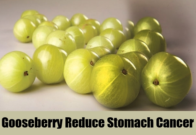 Gooseberry Reduce Stomach Cancer