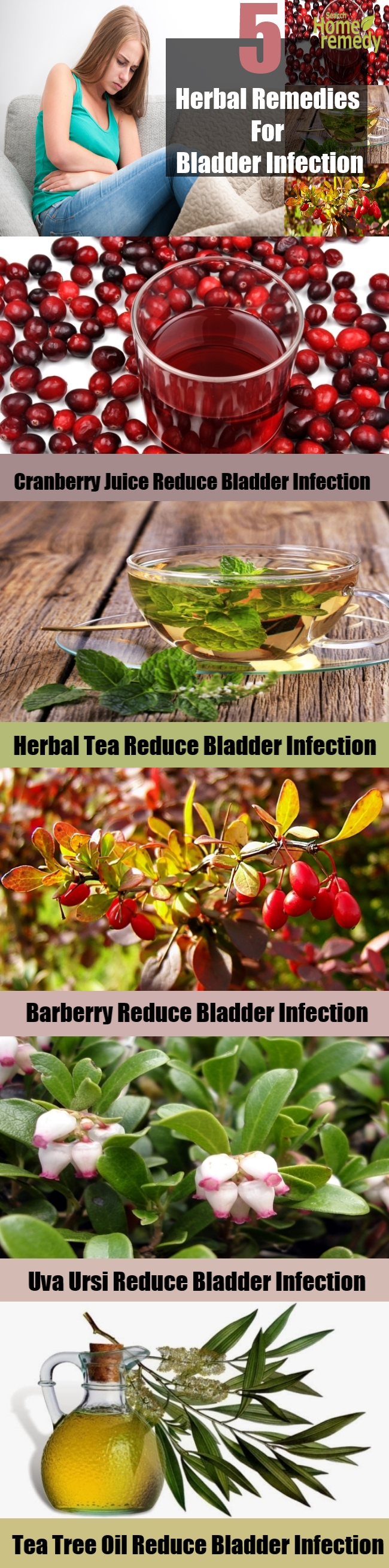 Top 5 Herbal Remedies For Bladder Infection