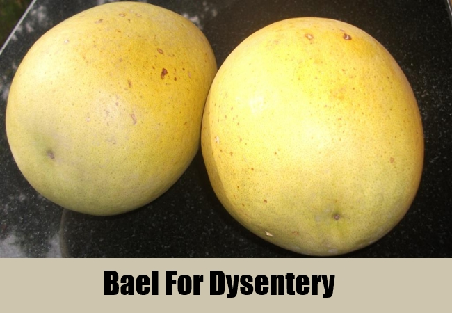 Bael For Dysentery
