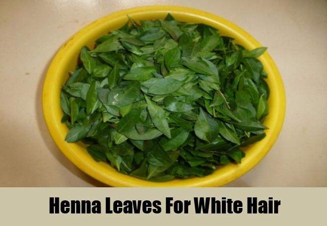Henna Leaves For White Hair