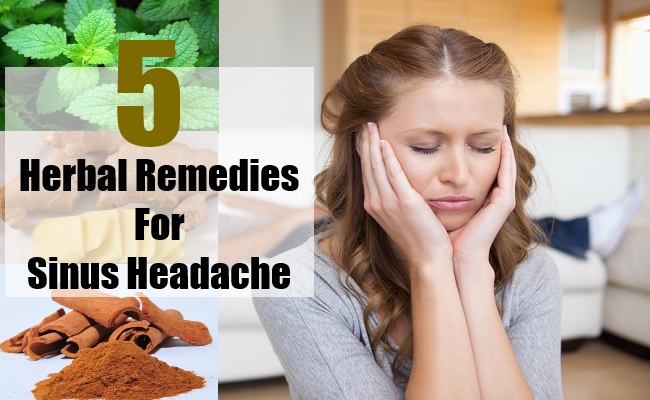 Herbal Remedies For Sinus Headache