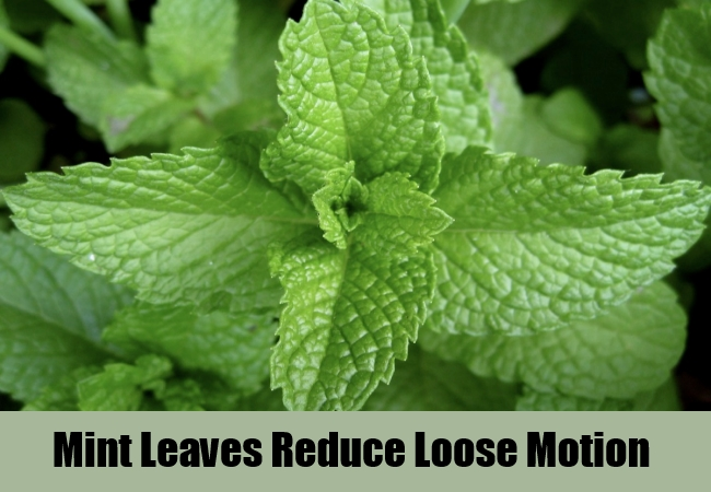 Mint Leaves Reduce Loose Motion