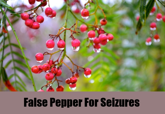 False Pepper For Seizures