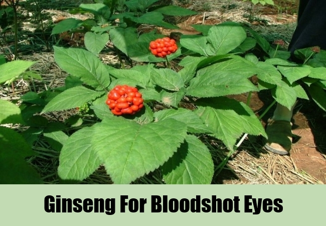 Ginseng For Bloodshot Eyes