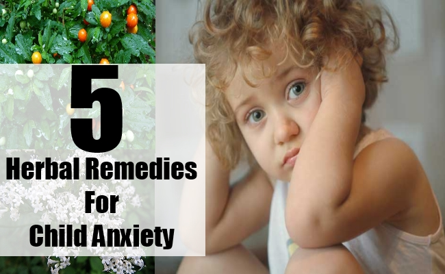 Herbal Remedies For Child Anxiety