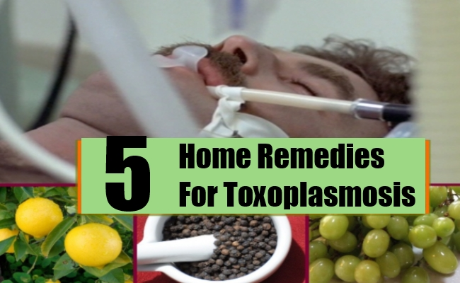 Home Remedies For Toxoplasmosis