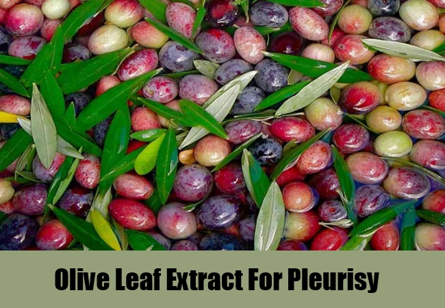 Olive Leaf Extract For Pleurisy