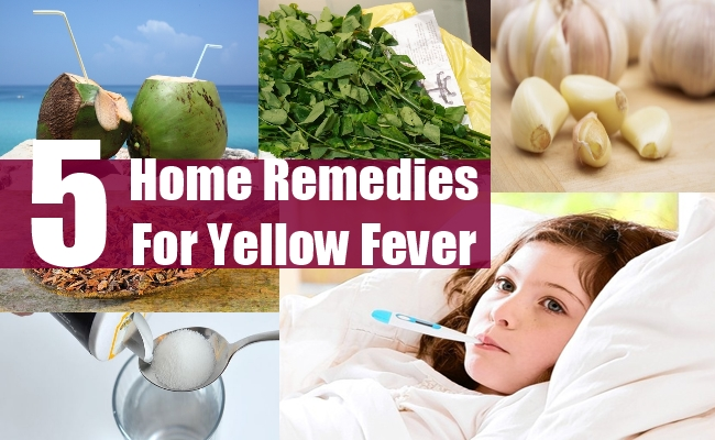 Remedies For Yellow Fever