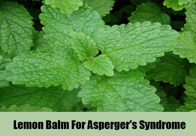 Lemon Balm For Asperger's Syndrome