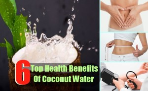 6 Top Health Benefits Of Coconut Water