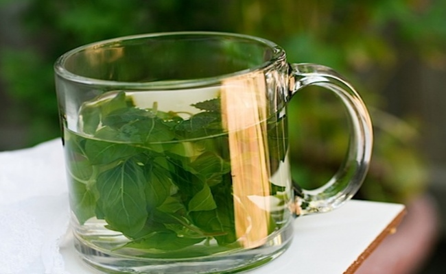 Mix Of Basil Leaves And Boiling Water
