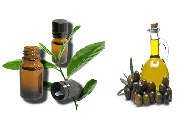 Use Tea Tree Oil With Olive Oil