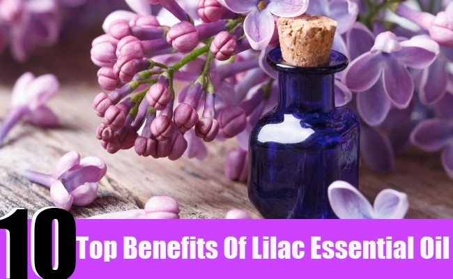 10 Top Benefits Of Lilac Essential Oil
