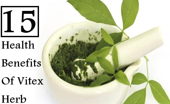 15 Health Benefits Of Vitex Herb