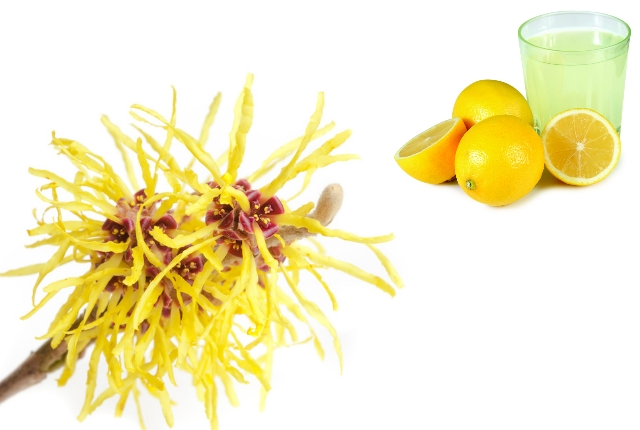 Lemon Juice And Witch Hazel