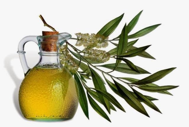 Use Tea Tree Oil