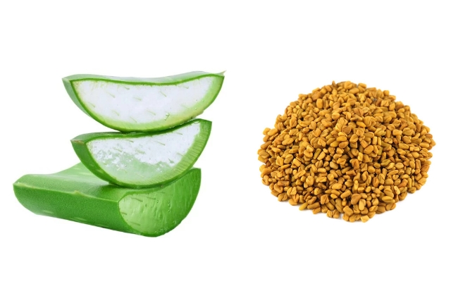Aloevera And Fenugreek