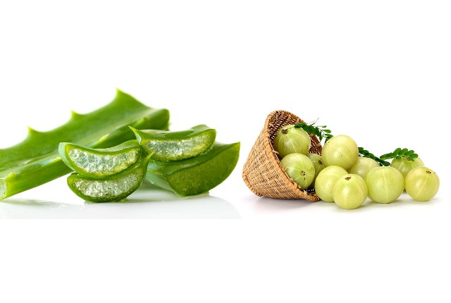 Indian Gooseberry And Aloe Vera Hair Mask