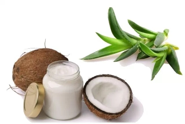 Coconut Milk With Aloe Vera