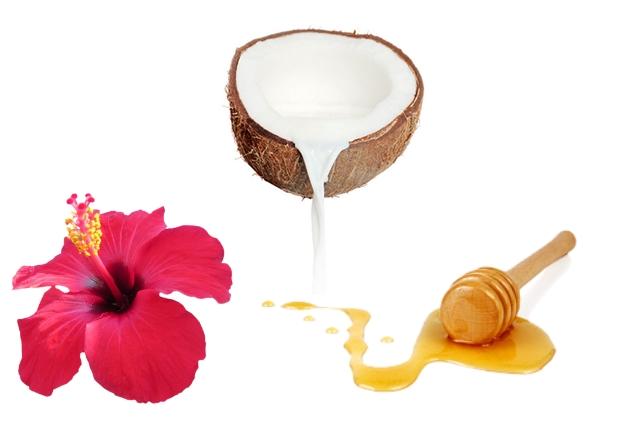 Hibiscus, Coconut Milk And Honey Mask