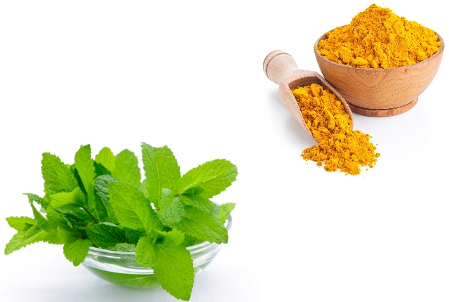Mint and Turmeric Face Pack
