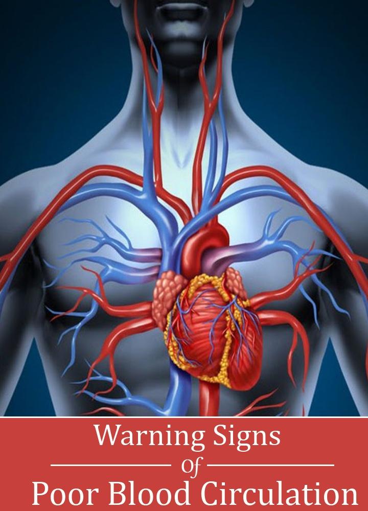 Warning Signs Of Poor Blood Circulation