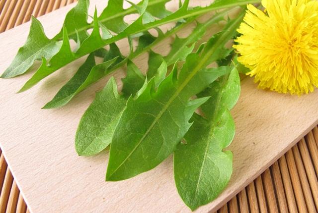 Use Dandelion Leaves