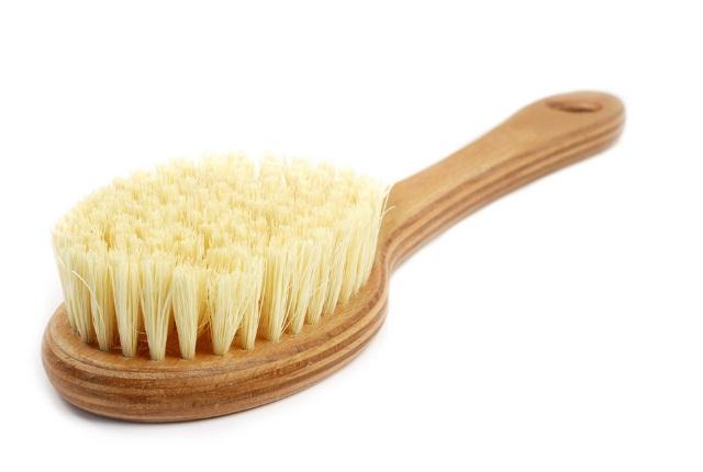 Dry Brush The Skin