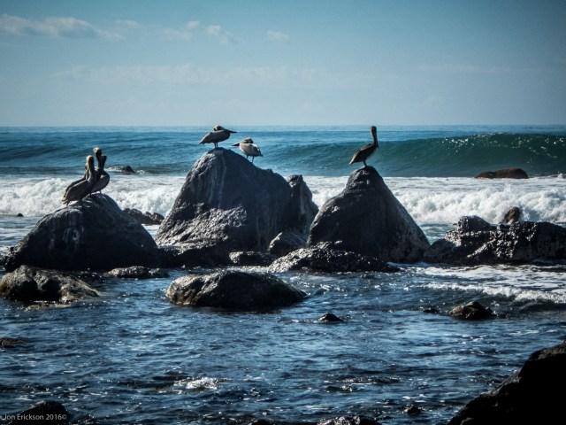Playa Troncones