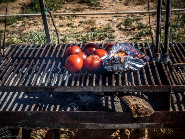 Grilling Tomatoes for lunch.